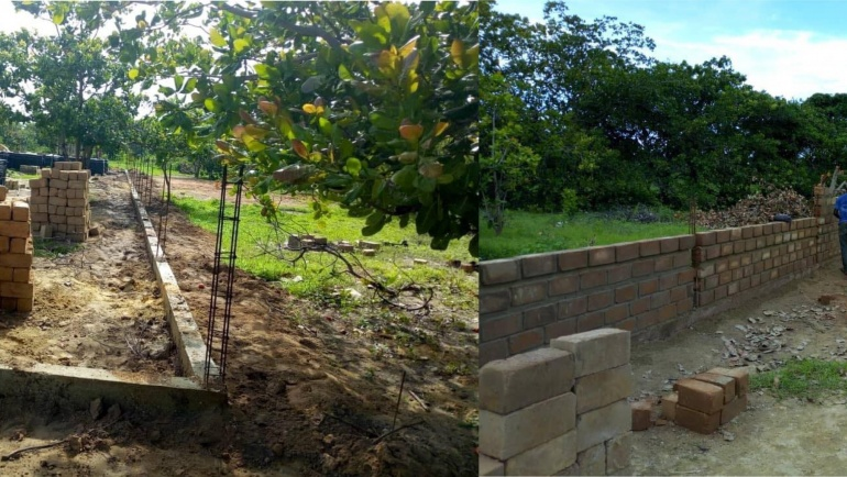 Des nouvelles de la clôture et des briques !